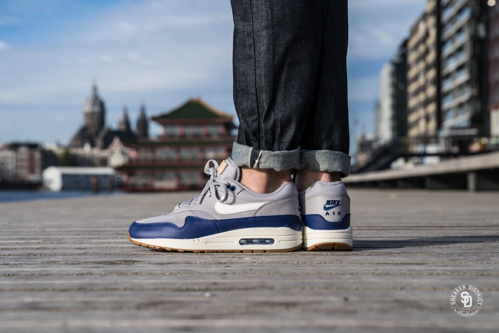 Nike Air Max 1 'BlueGrey' | AH8145 008